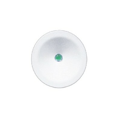 2 Watt Glade IP40 Emergency LED Downlight