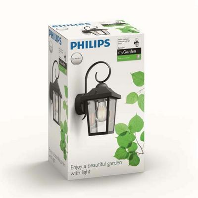 Philips BUZZARD Garden Wall Light